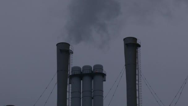 rostlina potrubí s kouřem