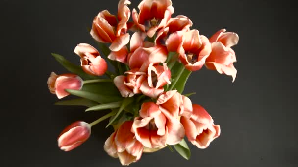 Gyorsított csokor piros tulipán sárga vázában