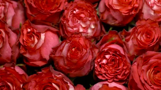 velká kytice rudých růží