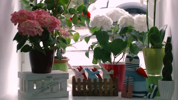 Decoration Windowsill Flowers in Pots and Toys