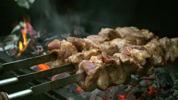Three Skewers With Meat