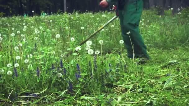 Muž stříhání trávy v krajině pomocí sekačka