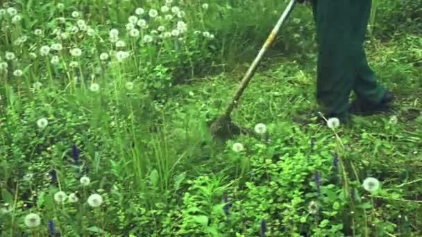 Aktivity - zahradní sekačka seká trávu