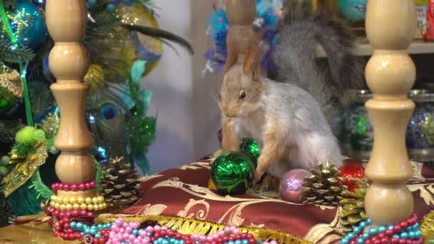 Umělé veverka drží novoroční hračka
