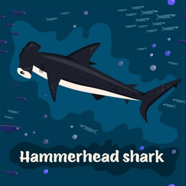 Hammerhead shark. Endangered fish species. Vector illustration