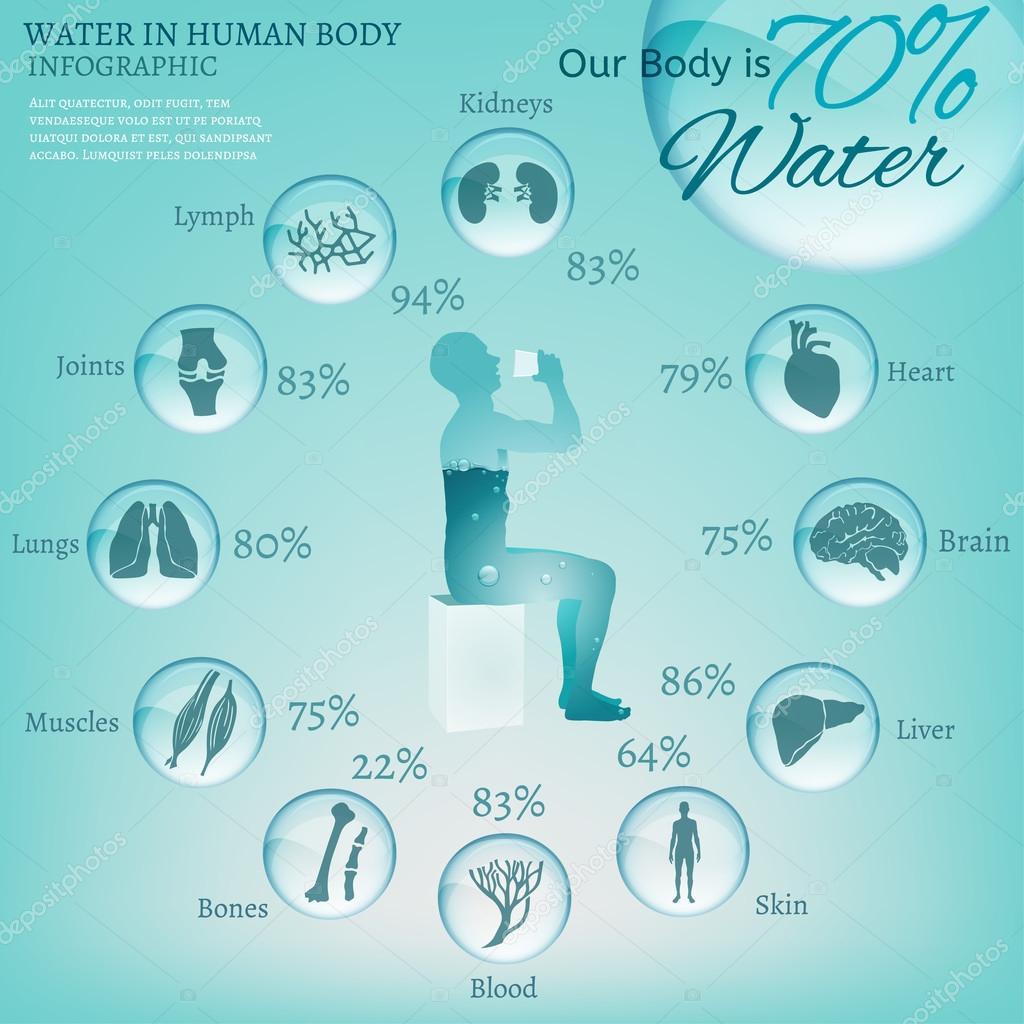 Wassergehalt Mensch