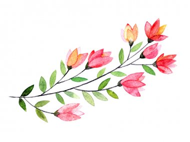 Watercolor Floral branch