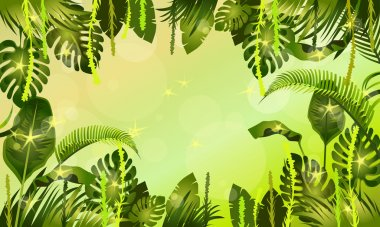 plants of jungle  background