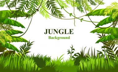 summer background with jungle