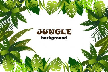Jungle floral  background. frame with leaves. vector illustration. stock vector