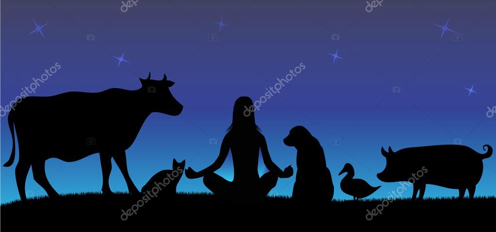 Silhouettes of woman with many animals in night