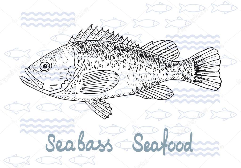 vector de pescado salmón — Archivo Imágenes Vectoriales ...