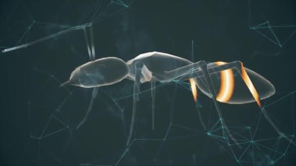 Ant 3d Scanning with laser 4k