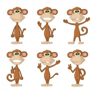 funny monkey different poses