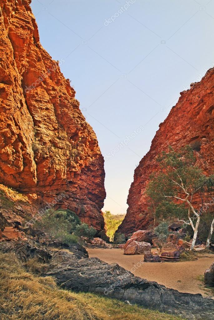 Australia, NT, Mac Donnell Range, 5180