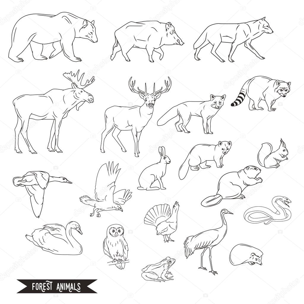 Forest animals silhouettes vintage. Vector illustration in line ...