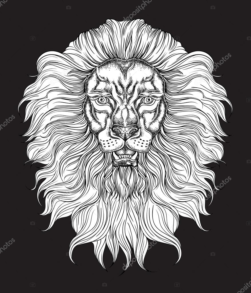 tete de lion dessin galerie tatouage. Black Bedroom Furniture Sets. Home Design Ideas