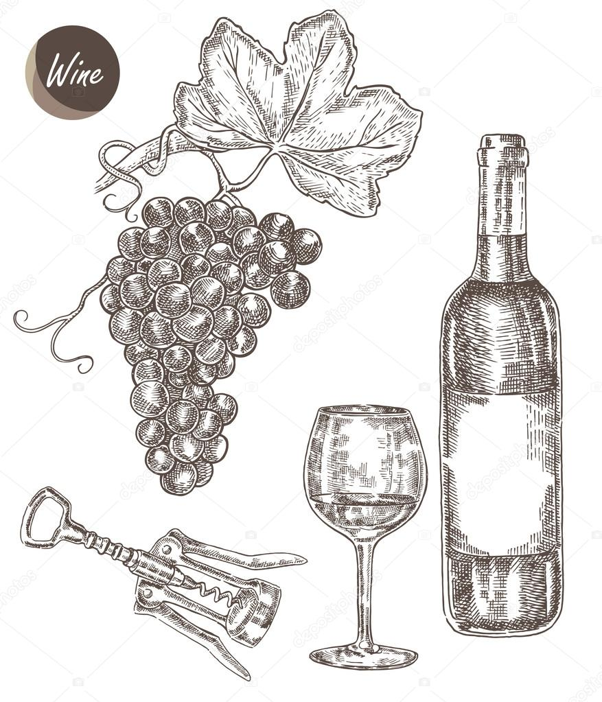 Wine set. Hand drawn bottle of wine, glass, bunch of grapes. Vector illustration
