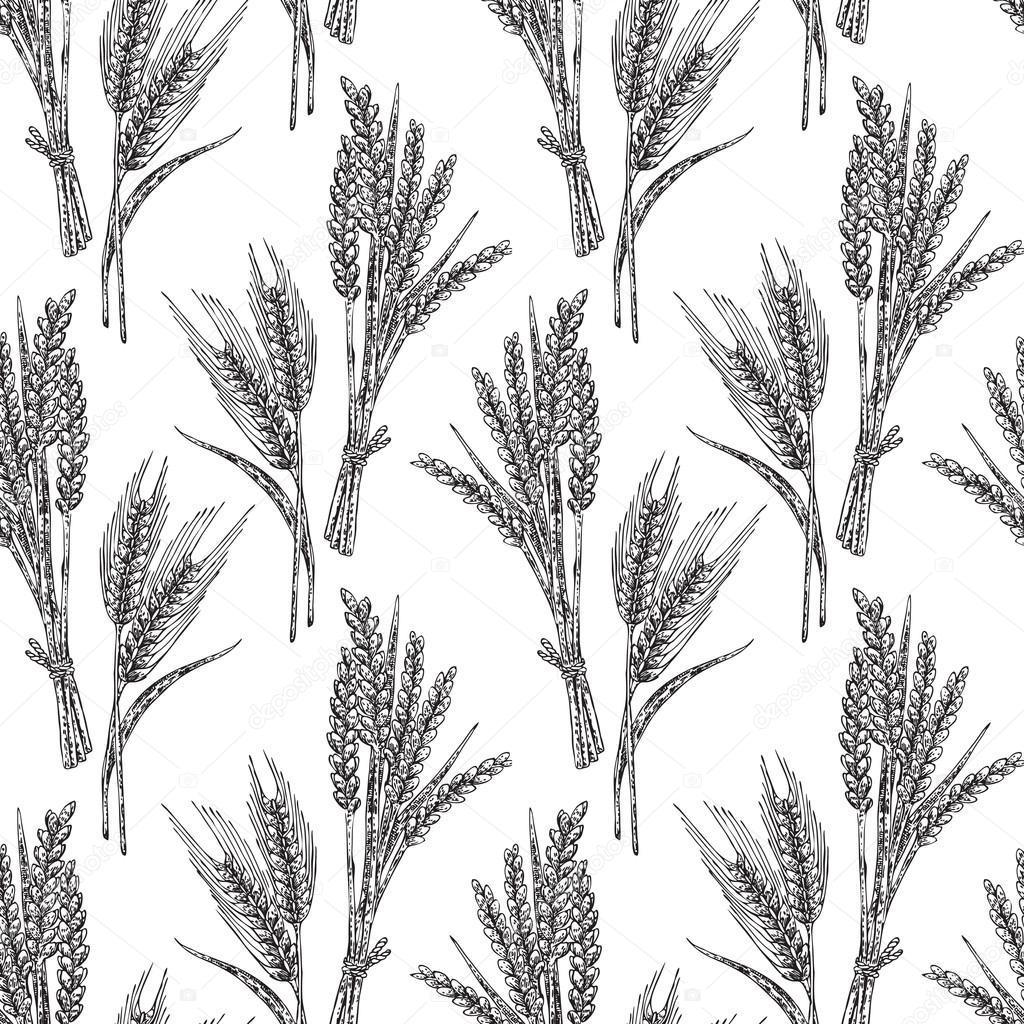 Wheat seamless pattern. Vector illustration in sketch style. Iso