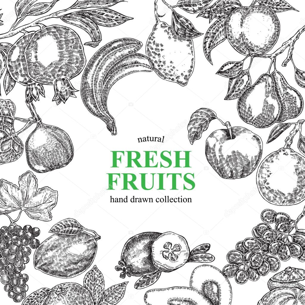 Vintage hand drawn fruits background. Vector illustration