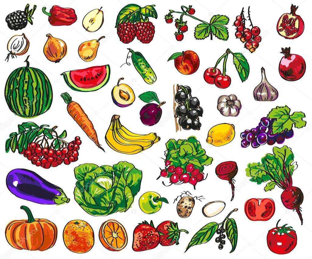 vegetables, fruits, berries