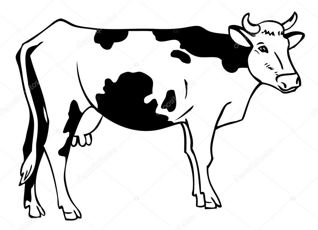 Vacas dibujo dibujo de una vaca vector de stock - Vache en dessin ...