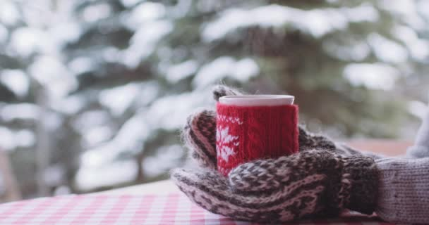 Female hands holding cup of tea at winter