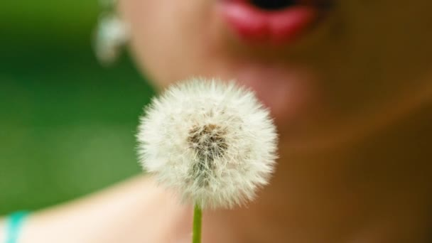 Dandelion blown by woman