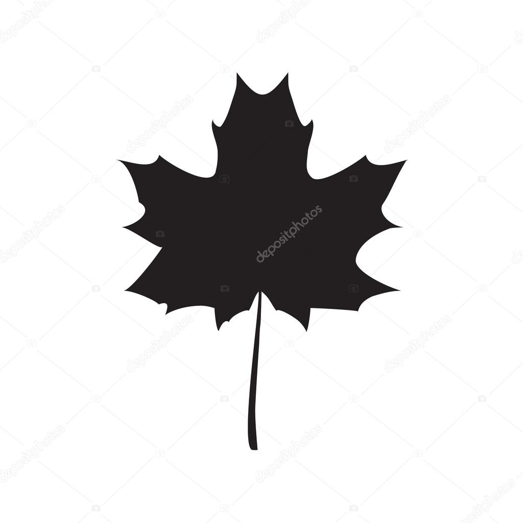 Black Maple leaf vector illustration