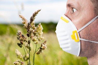 allergy season, face, man,