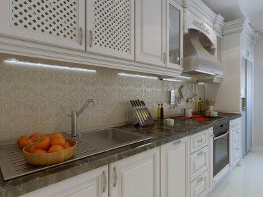 Classic kitchen interior