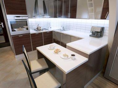 Modern zebrano kitchen design