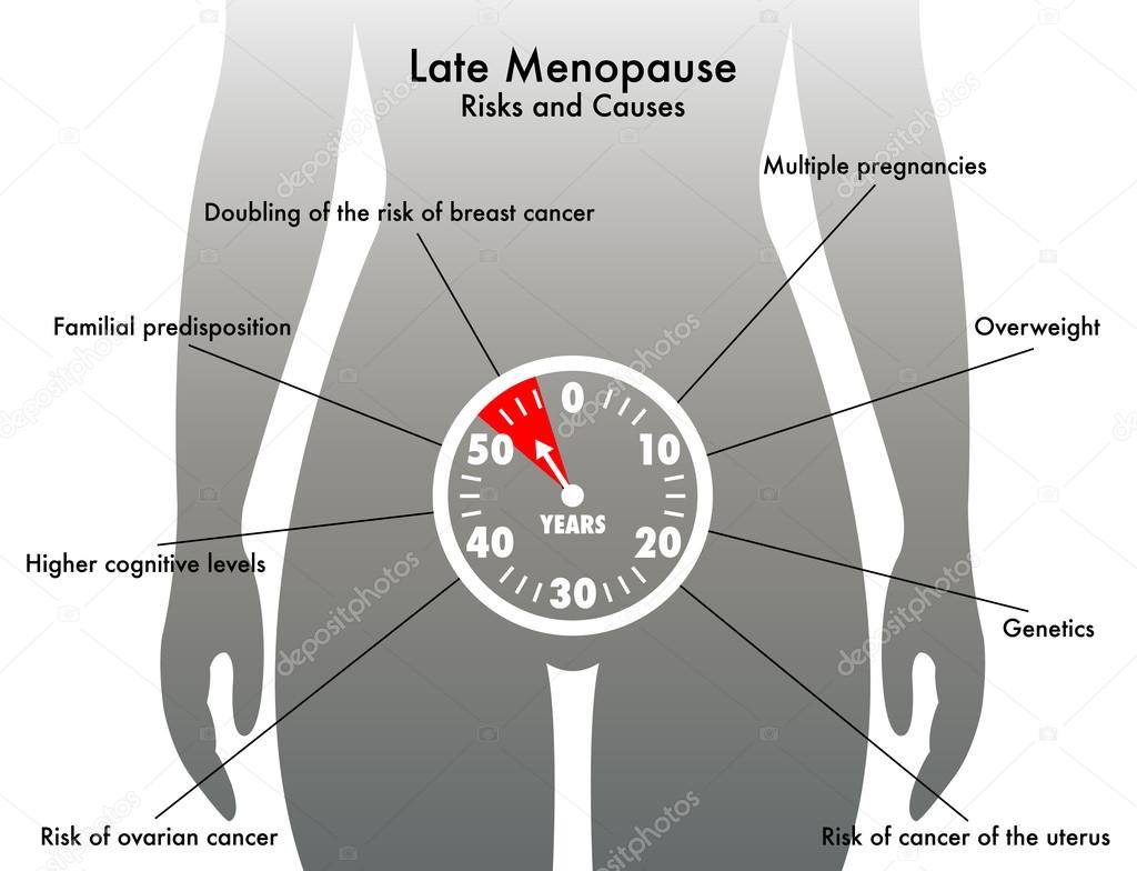 Menopausia tardía — Vector de stock © rob3000 #60816913