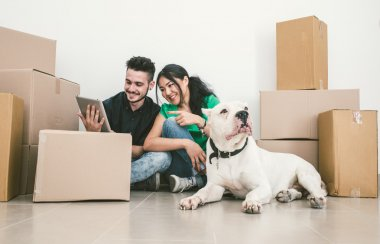 Couple moving new house and checking solutions on the internet
