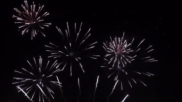 Zářící ohňostroj. Ohňostroj s částicemi a jiskry na černé noční obloze. Skutečný záběr na pozadí ohňostroje. Zářící ohňostroj s bokeh. Nový rok předvečer ohňostroje oslavy.