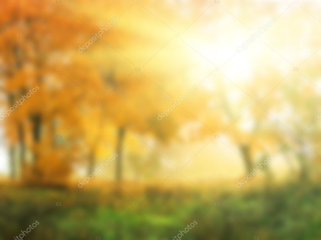 Abstract natural background,autumn in sunny forest