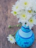 Bílá sedmikráska květ v barevné vázy