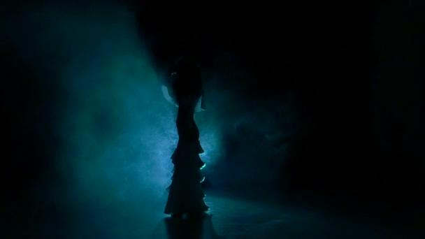 Žena přes exotické břišní tanečnice, zamávat jí vlasy, černá, zpomalené, silueta, kouř