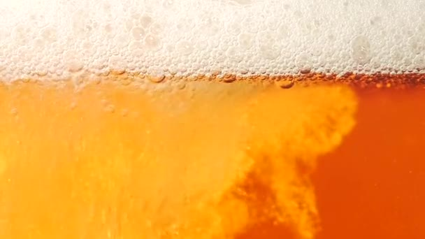 Beer is poured in a glass. Closeup. Slow motion
