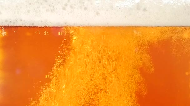 Light beer is poured in a glass. Closeup. Slow motion