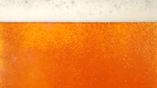Pouring cold beer into glass. Closeup. Slow motion