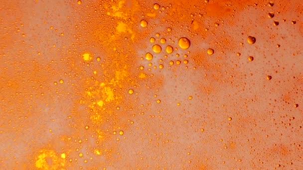 Beer. Closeup. Slow motion