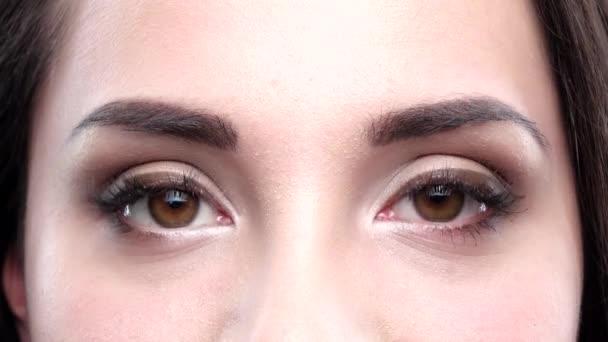 Brown womens eyes blink. Close up