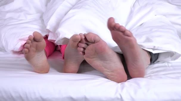 Four legs lie under a blanket, closeup