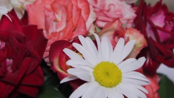 Csokor virág a százszorszépek és rózsák.