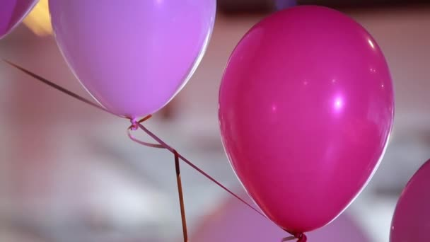 Pink and purple balloons, festive decorations for birthday or wedding