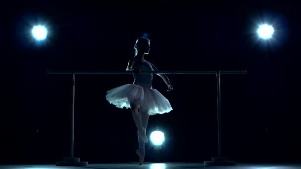 classic ballet dancer in white tutu posing on one leg at ballet barre