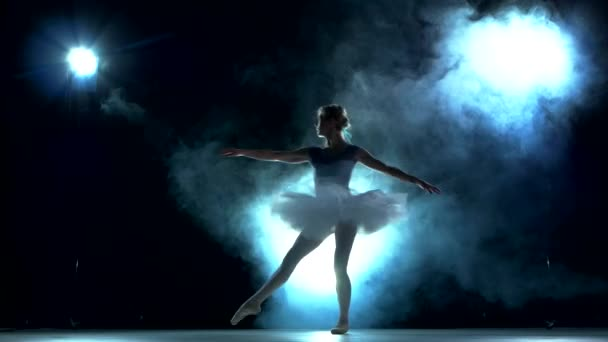 ballerina doing a workout in the classroom on blue