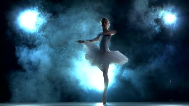 Ballerina beim Workout auf blau