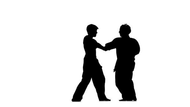Figures in the karate fighting
